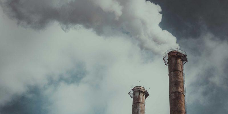 Große Tierhaltungsanlagen müssen künftig 70 % ihrer Ammoniak- und Feinstaubemissionen aus der Abluft filtern.